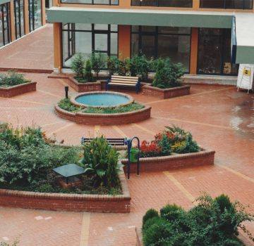 D-Plaza (3)